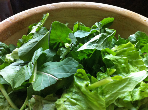 Glorious Garden Greens Dressing Recipe 2 Sisters Anytown USA