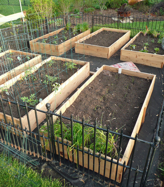 Vegetable Garden Box DIY 2 Sisters Anytown USA